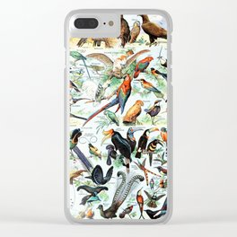 Vintage Illustration Bird Chart II Clear iPhone Case