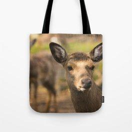Deer cow looks around the corner Tote Bag