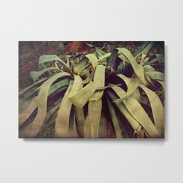 It's like aloe for your soul Metal Print