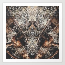 Fantasy Forest Floor  Art Print