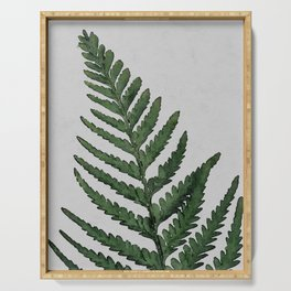 Botanical Forest Sage Green Vintage Leaf Fern, Watercolor Wall Art Farmhouse Rustic Country Nature Serving Tray