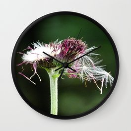 Thistle Seedhead Wall Clock