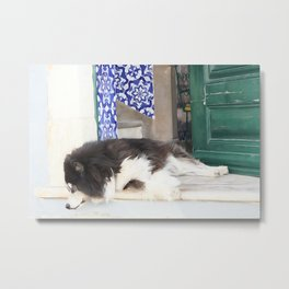 Wall art dog sleeping, street art, Portugal street, I'm lazy today......street dog and azulejos Metal Print
