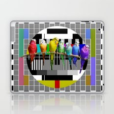 Testing the Rainbow Budgies Laptop & iPad Skin