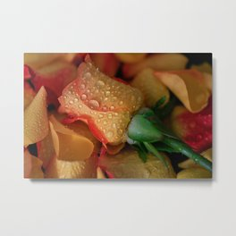 Midas Touch Rose  Metal Print