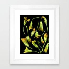 Squash Blossoms Framed Art Print