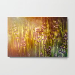 Scent of Summer Metal Print