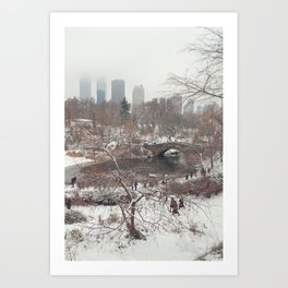 Central Park Winter Art Print