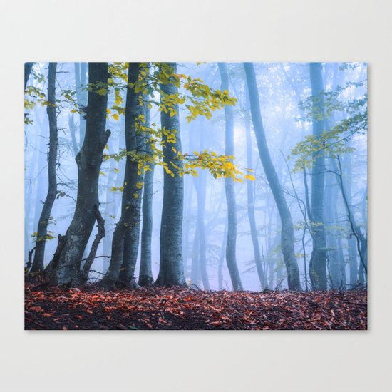 Mysterious Woods Canvas Print