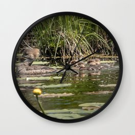 Merganser Family Wall Clock