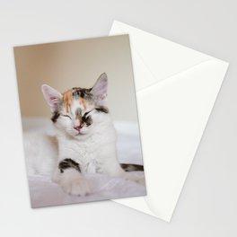 Sleepy cat (II) Stationery Cards