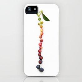 Blueberry Gradient iPhone Case