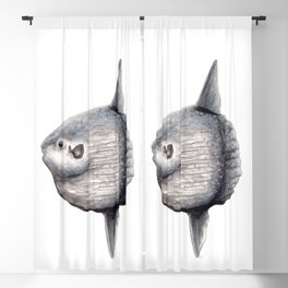 Ocean Sunfish (Mola mola) Blackout Curtain