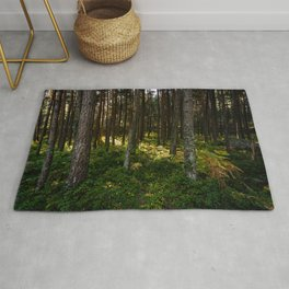Sun rays in the forest Rug