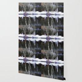 White Ryga reflections 011 27 10 17 Wallpaper