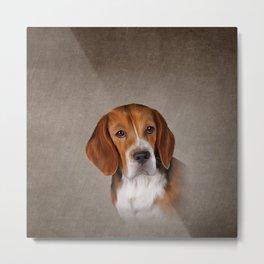 Drawing Dog Beagle 3 Metal Print