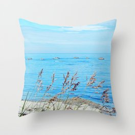 Circle of Rocks and the Tall Grass Throw Pillow