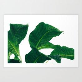 Green Leafs (Color) Art Print