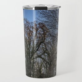 Beautiful day in a winter forest Travel Mug