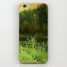 Still Waters iPhone Skin