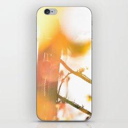 No.5 iPhone Skin