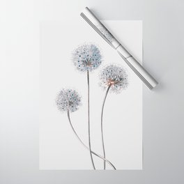 Dandelion 2 Wrapping Paper