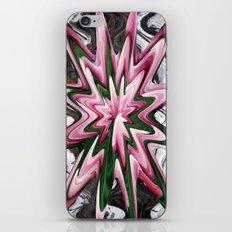 8094 iPhone & iPod Skin