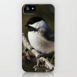 Cedar Singer iPhone Case