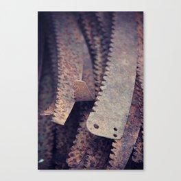 Rust 5 Canvas Print