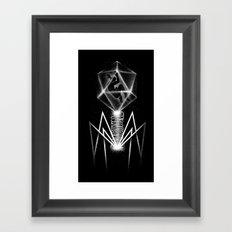 Bacteriophage Framed Art Print