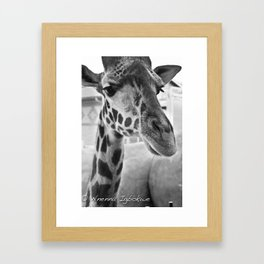 Long neck Framed Art Print