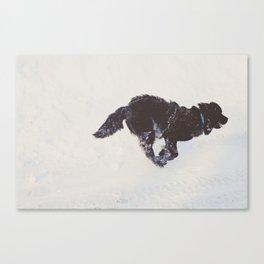 duncan Canvas Print