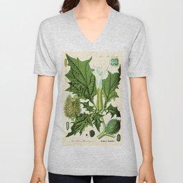 Datura stramonium (thorn apple - jimson weed or devil s snare) - Vintage botanical illustration Unisex V-Neck