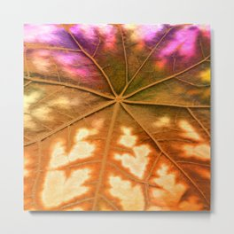 Leaf Incredible, Amber Metal Print