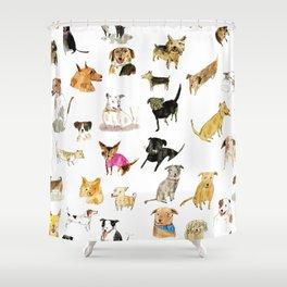 adopt a dog Shower Curtain