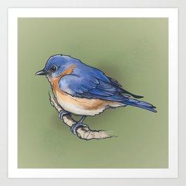 bluebird. Art Print