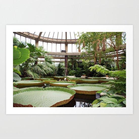 2009 - Winter Garden Art Print