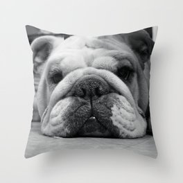 Black and White English Bulldog Photography Throw Pillow