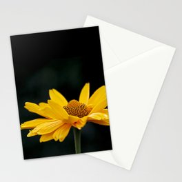 Bright Yellow And Black Stationery Cards