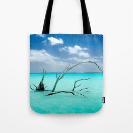 Driftwood in Lagoon Tote Bag