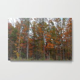 Colorful Cuyahoga Valley Metal Print
