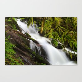 Over and Under Canvas Print
