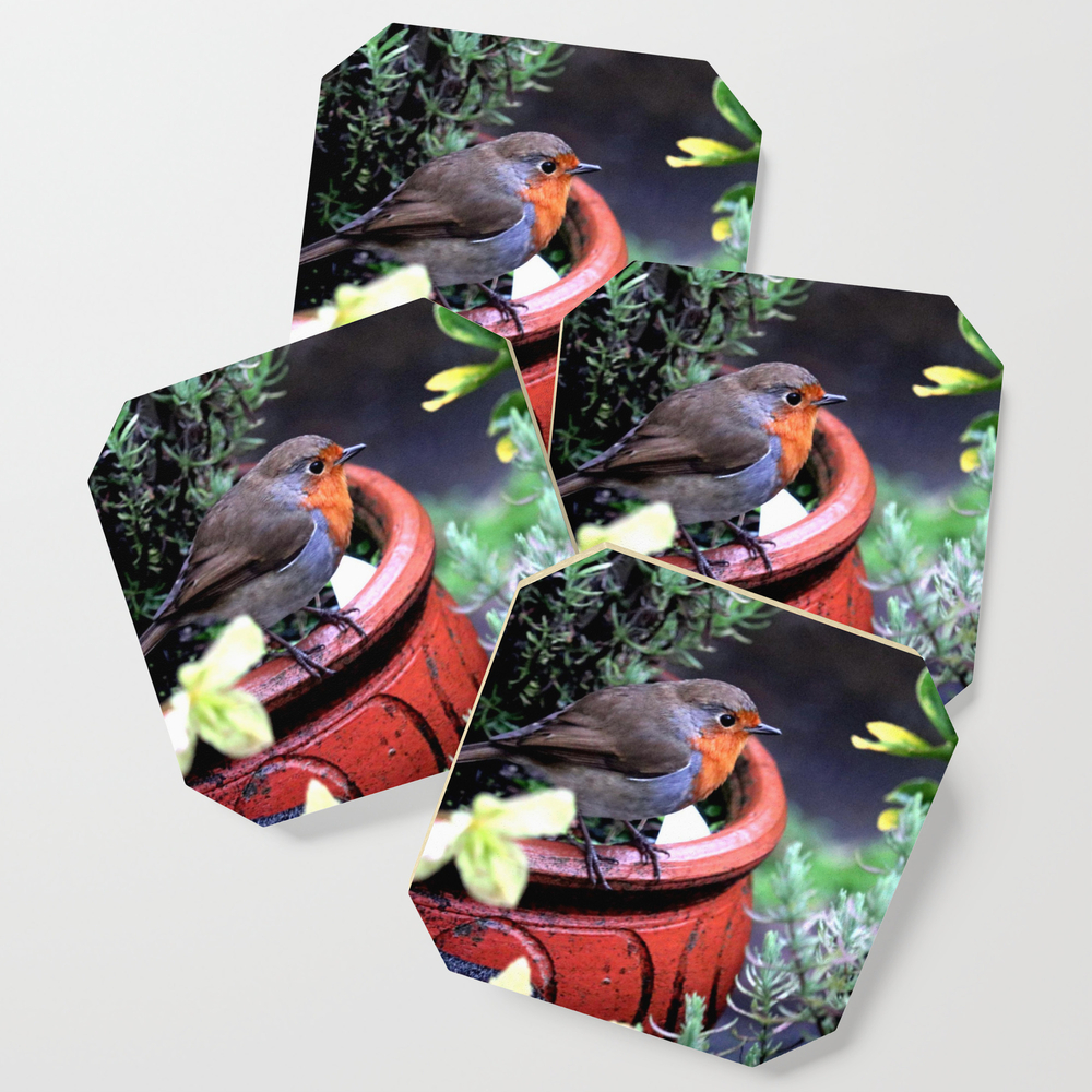 Robin Redbreast Coasters by bryanwb (S6C10633414) photo