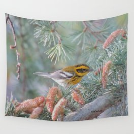 A Townsend's Warbler Spruces Up Wall Tapestry
