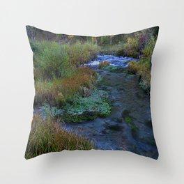 SCSD Throw Pillow