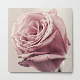 Dusky Roses, 1 Metal Print