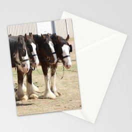 Clydesdale Team of Four Stationery Cards