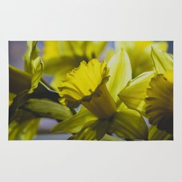 Daffodil Image, from my floral photography collection Rug