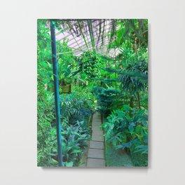Tropical Garden - Mint Palette  Metal Print
