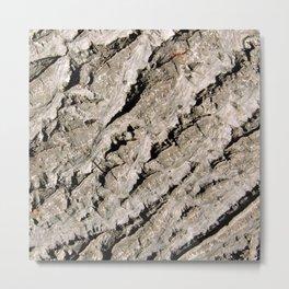 TEXTURES: Walnut Bark Metal Print